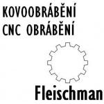 Fleischman Petr – logo společnosti