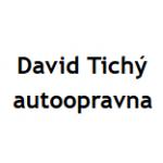 Tichý David – logo společnosti