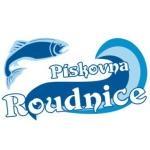 Těžební písková s.r.o. (Pardubice) – logo společnosti