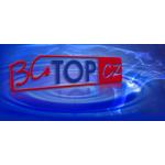 Culek Bohumil – logo společnosti