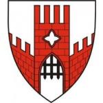 Městský úřad Vyškov – logo společnosti