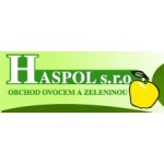HASPOL, spol. s.r.o. – logo společnosti