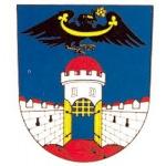 Město Dolní Bousov – logo společnosti