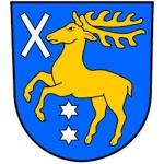 Obec Sány – logo společnosti
