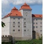 Muzeum Mladoboleslavska – logo společnosti