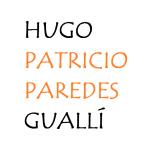 Ethnomusic.cz -Hugo Patricio Paredes Gualli – logo společnosti