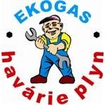 Jan Špaček - EKOGAS – logo společnosti