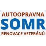 Somr Vít – logo společnosti