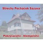 Pecháček Jaroslav - Střechy na klíč – logo společnosti