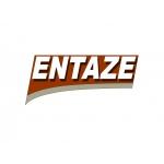 ENTAZE s.r.o. – logo společnosti