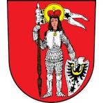 Město Trhový Štěpánov – logo společnosti