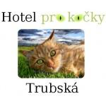 PAVLÍKOVÁ Věra, Ing. - Hotel pro kočky Trubská – logo společnosti